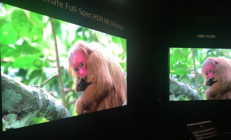 Sony 8K display