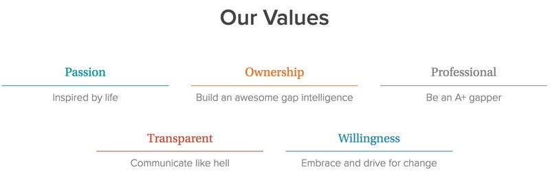 gap intelligence's values
