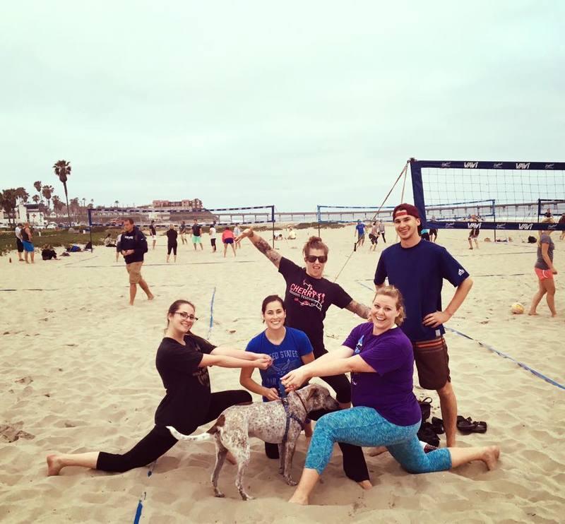 Fighting Hedgehogs beach volleyball team