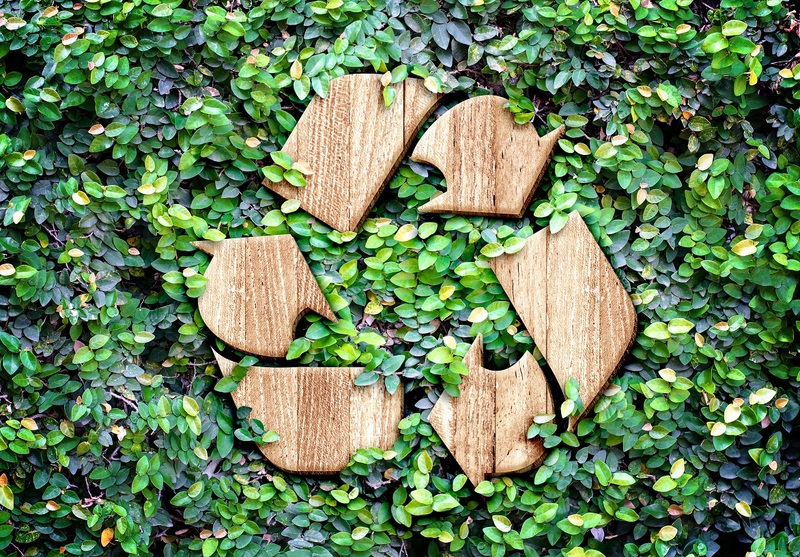 Recycle symbol in shrubs.