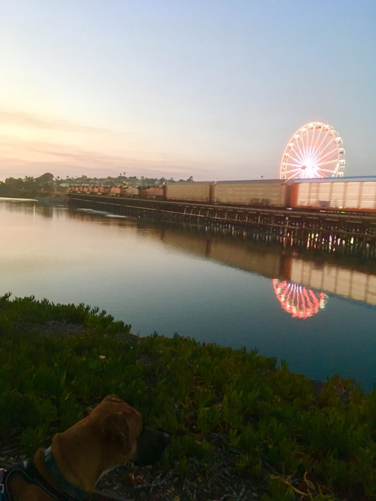Walking with dog at the lagoon by the Del Mar Fair at sunset.